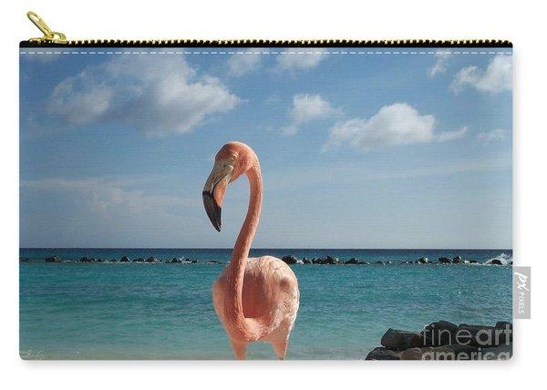 Aruba Hairy Eyeball Carry-all Pouch
