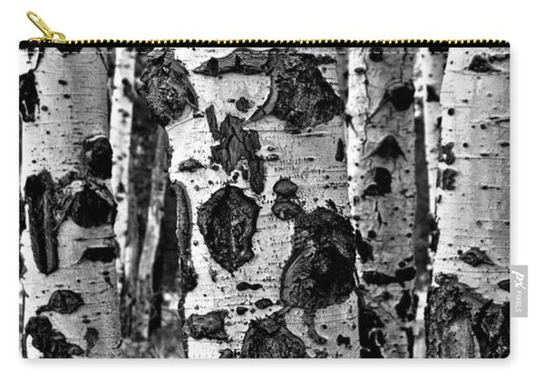 Carry-all Pouch featuring the photograph Aspen Art by Mae Wertz