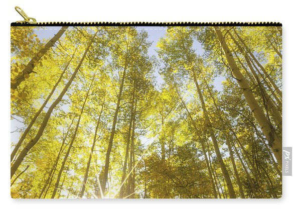 Aspen Day Dreams Carry-all Pouch