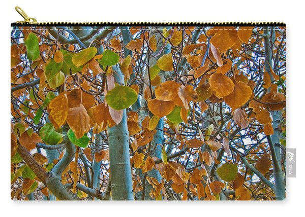 Carry-all Pouch featuring the photograph Aspen Leaves In The Fall by Mae Wertz