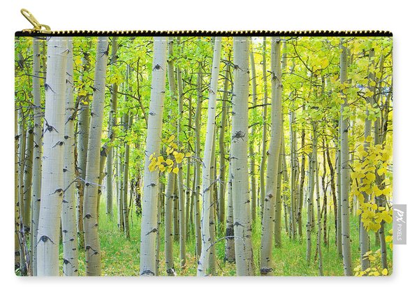 Aspen Tree Forest Autumn Time  Carry-all Pouch