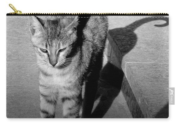 Aswan Cat Carry-all Pouch