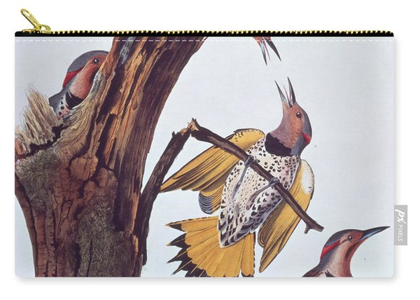 Audubon Golden-winged Woodpeckers Carry-all Pouch