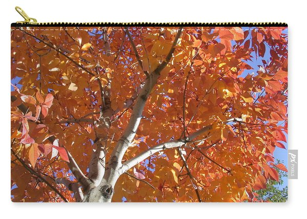 Autumn Aspen Carry-all Pouch