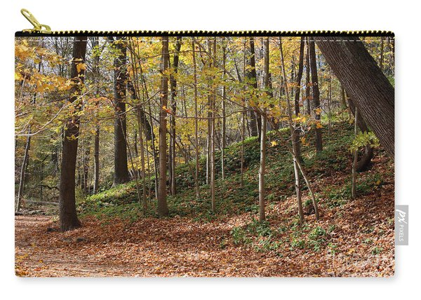 Autumn In Grant Park 4 Carry-all Pouch
