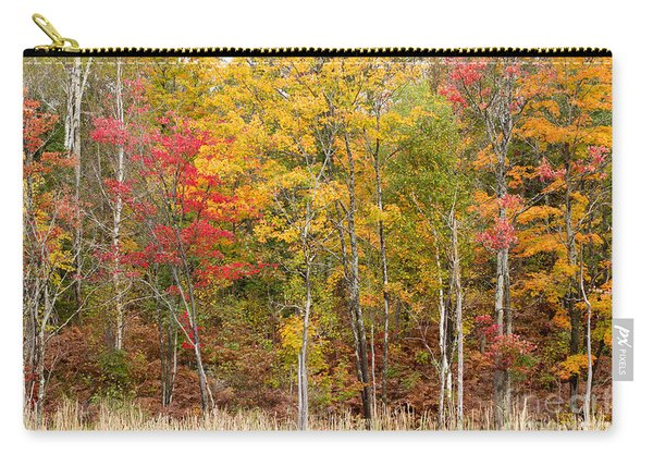 Autumn In Muskoka Carry-all Pouch