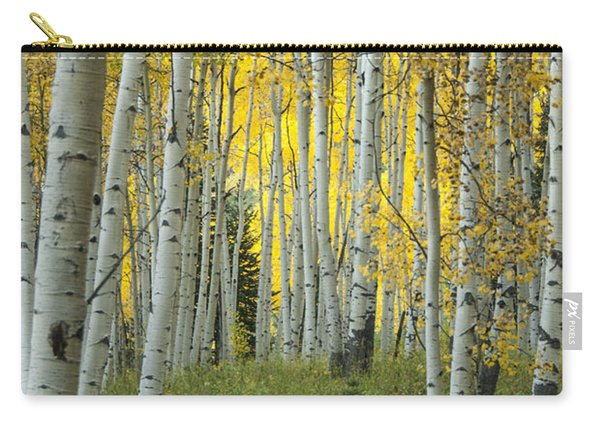 Autumn In The Aspen Grove Carry-all Pouch