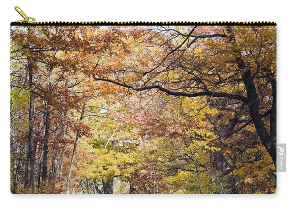 Autumn Pedestrian Path Carry-all Pouch