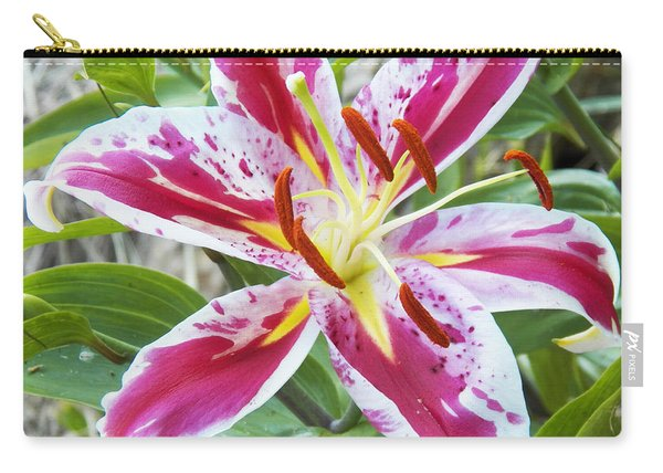 Awakening Asiatic Lily Carry-all Pouch