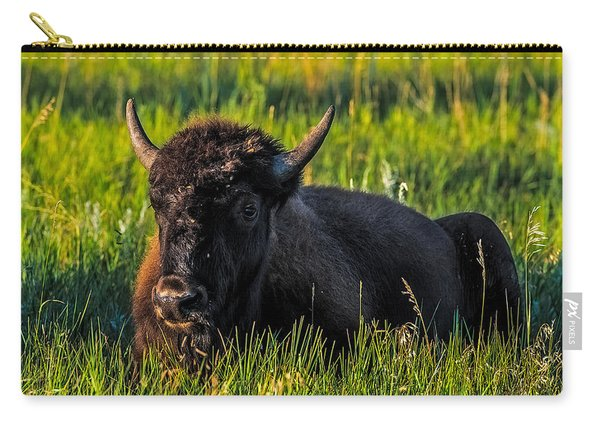 Baby Buffalo Carry-all Pouch
