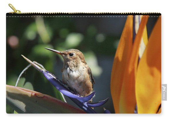 Baby Hummingbird On Flower Carry-all Pouch