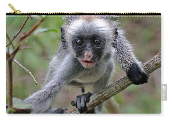 Baby Red Colobus Monkey Carry-all Pouch
