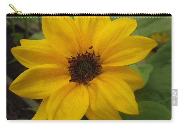 Baby Sunflower Carry-all Pouch