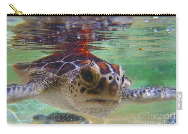 Baby Turtle Carry-all Pouch