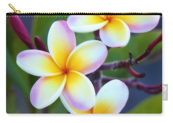 Backyard Plumeria Carry-all Pouch