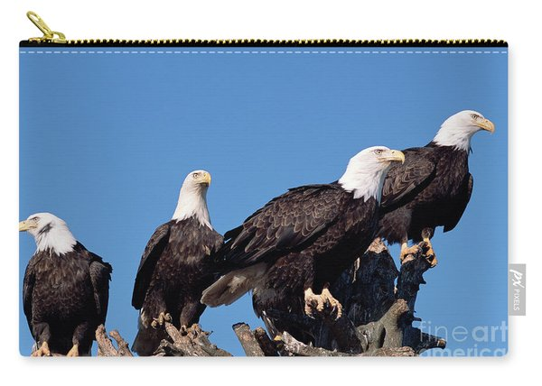 Bald Eagles Quartet Carry-all Pouch