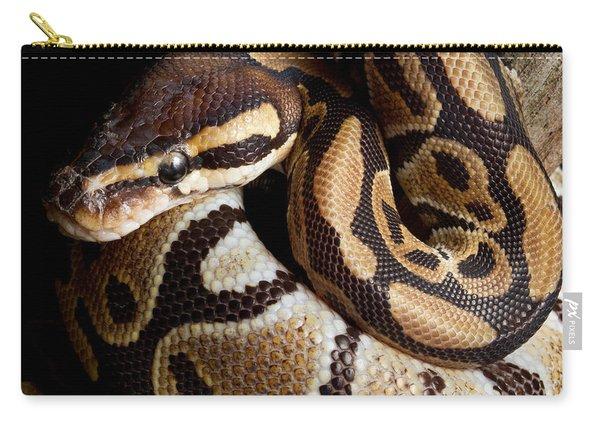 Ball Python Python Regius Carry-all Pouch