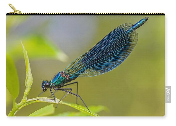 Banded Demoiselle Damselfy Male Carry-all Pouch
