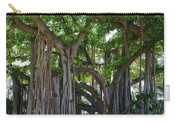 Banyan Tree At Honolulu Zoo Carry-all Pouch