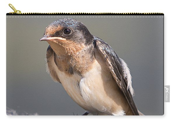 Barn Swallow On Rope I Carry-all Pouch