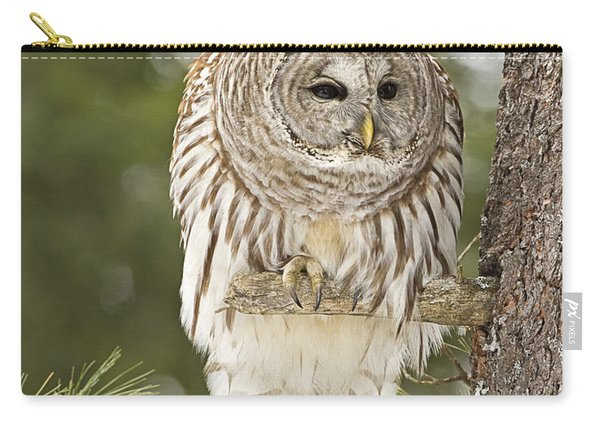 Barred Owl Hunting Carry-all Pouch