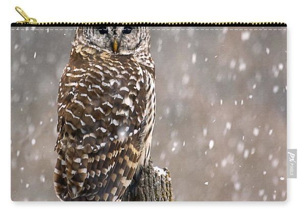 Barred Owl In A New England Snow Storm Carry-all Pouch