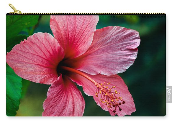 Beautiful Hibiscus Carry-all Pouch