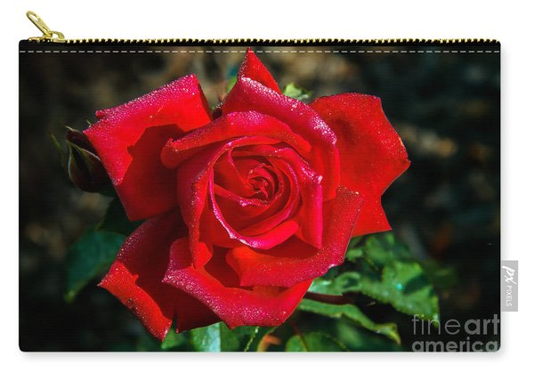 Beautiful Red Rose After A Rain Carry-all Pouch