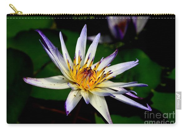 Beautiful Violet White And Yellow Water Lily Flower Carry-all Pouch