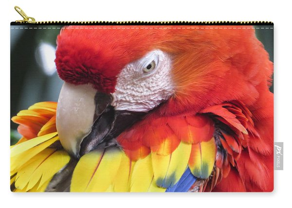 Beauty Scarlet Carry-all Pouch