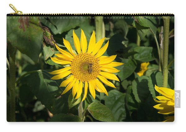 Bee On Sunflower, Baden-wurttemberg Carry-all Pouch