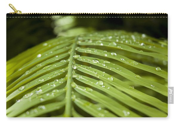 Carry-all Pouch featuring the photograph Bending Ferns by Carolyn Marshall