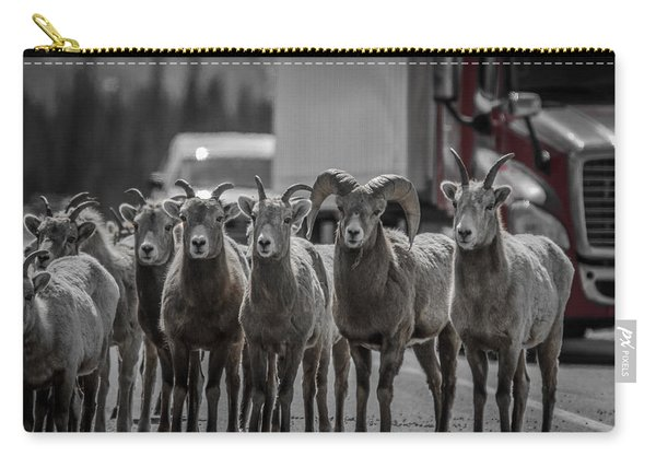 Big Horn Sheep Road Block Carry-all Pouch