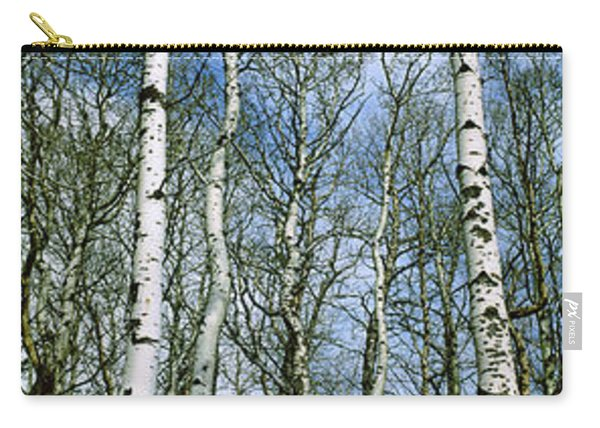 Birch Trees In A Forest, Us Glacier Carry-all Pouch