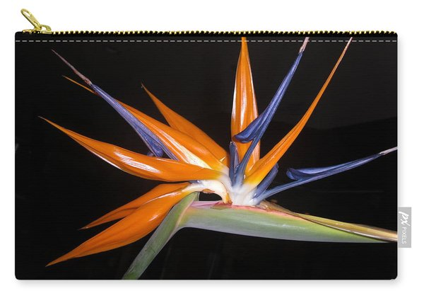Bird Of Paradise Beauty 4 Carry-all Pouch