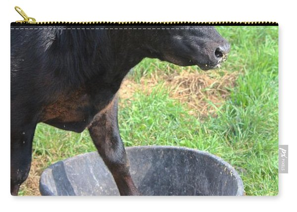 Black Angus Calf Carry-all Pouch