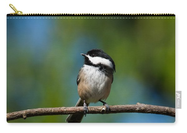 Black Capped Chickadee Perched On A Branch Carry-all Pouch