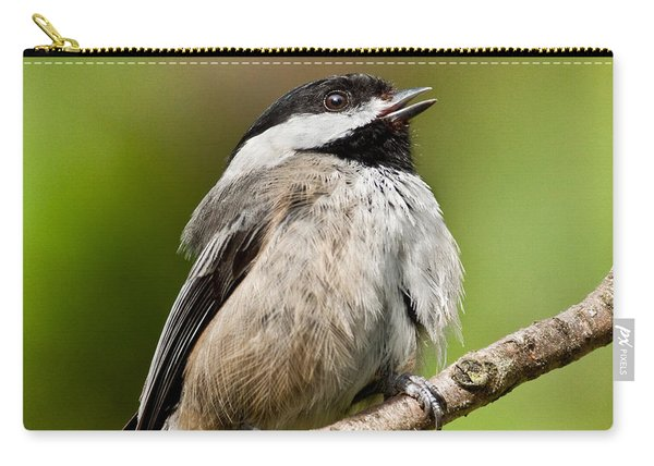 Black Capped Chickadee Singing Carry-all Pouch