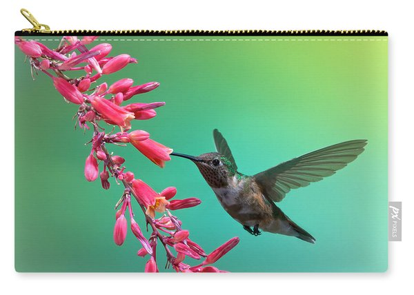Carry-all Pouch featuring the photograph Black Chinned Hummingbird by Mary Lee Dereske