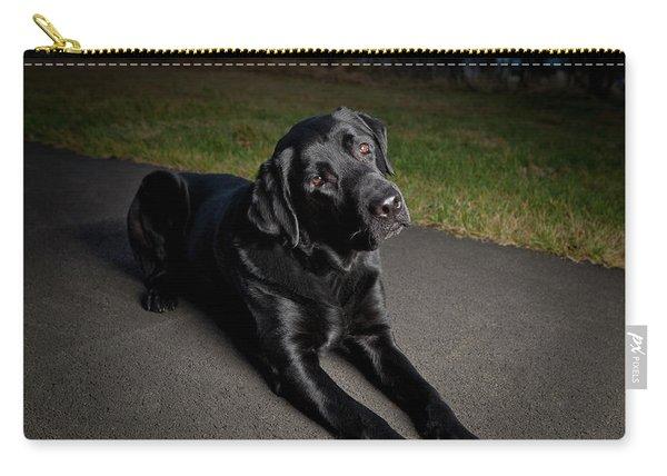Black Labrador Retriever Lying Down Carry-all Pouch