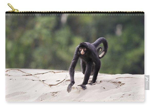Black Spider Monkey Carry-all Pouch