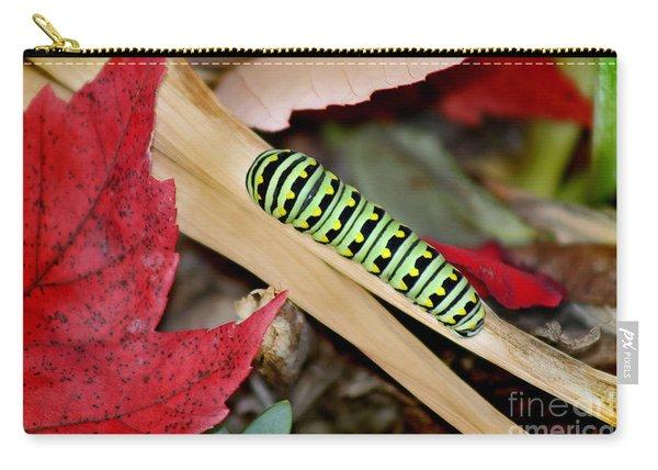 Black Swallowtail Butterfly Caterpillar Carry-all Pouch