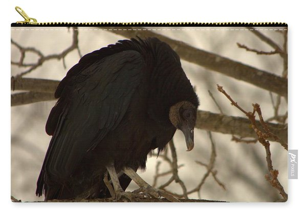 Black Vulture 4 Carry-all Pouch