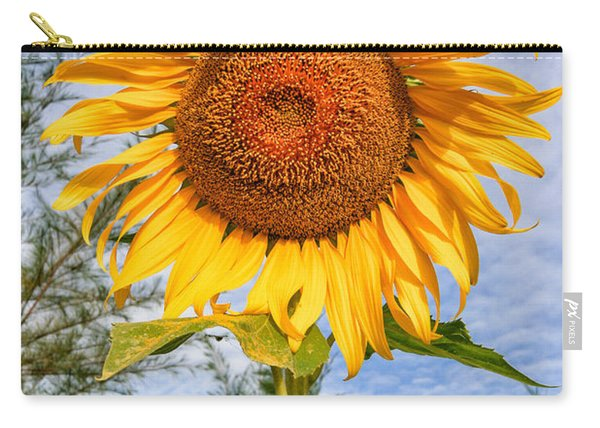 Blooming Sunflower V2 Carry-all Pouch