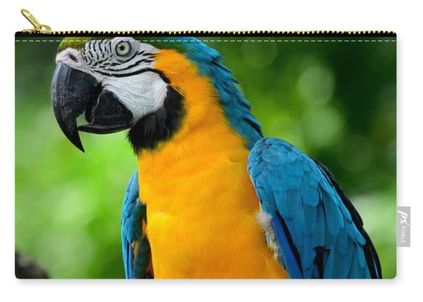 Blue And Yellow Gold Macaw Parrot Carry-all Pouch