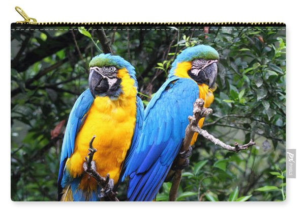 Blue And Yellow Macaws Carry-all Pouch