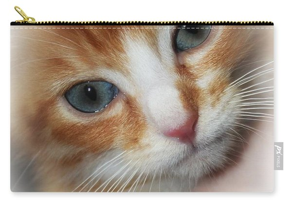 Blue Eyed Boy Carry-all Pouch