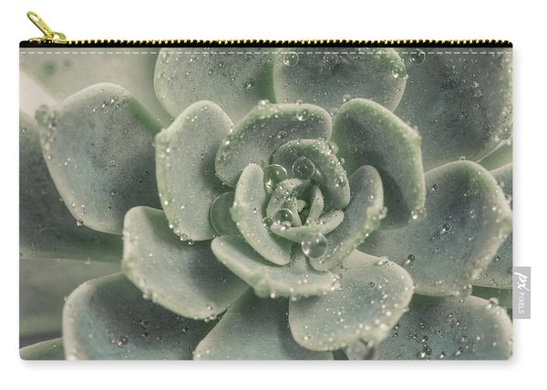 Blue Green Succulent 2 Carry-all Pouch