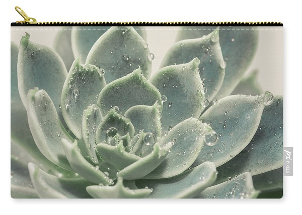 Blue Green Succulent Carry-all Pouch