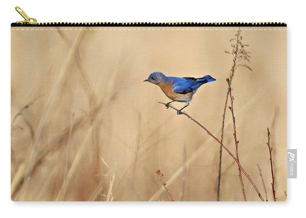 Bluebird Meadow Carry-all Pouch